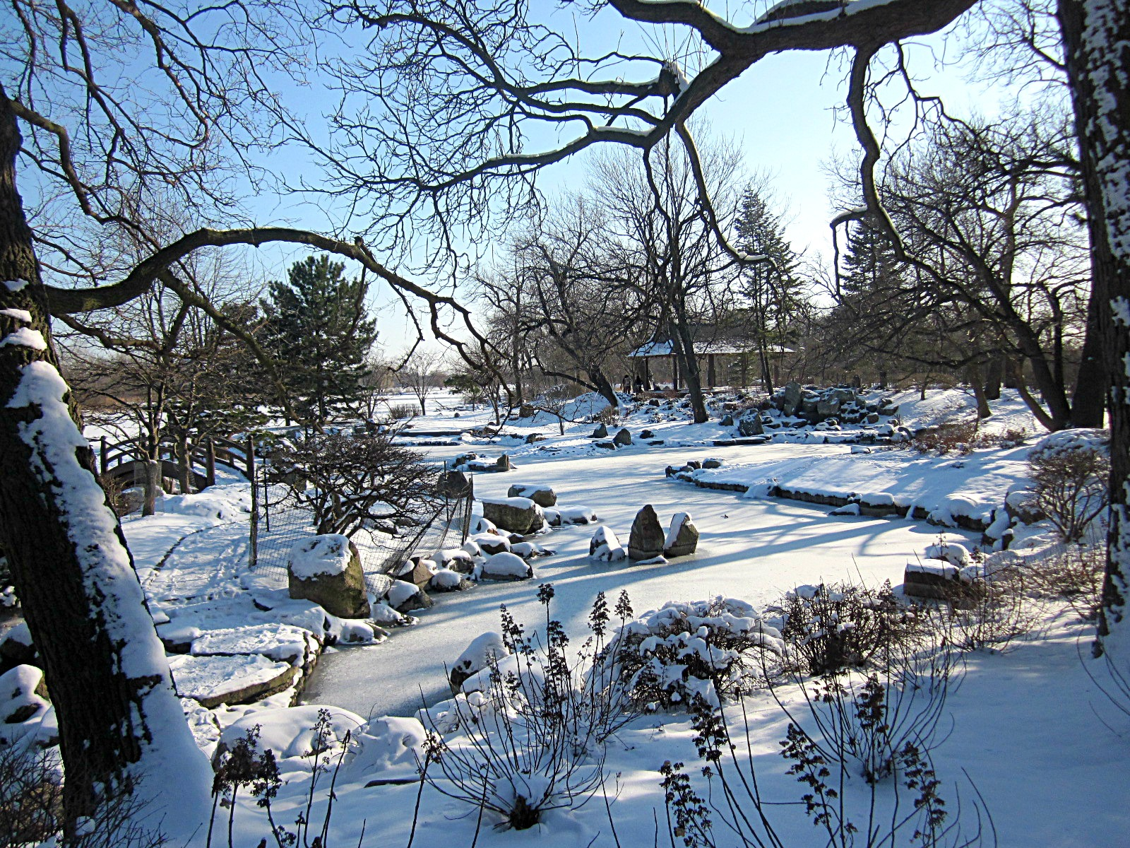 a winter u0027s tale snowscapes in jackson park and central park