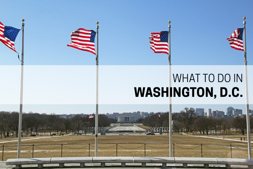 what-to-do-in-washington-dc